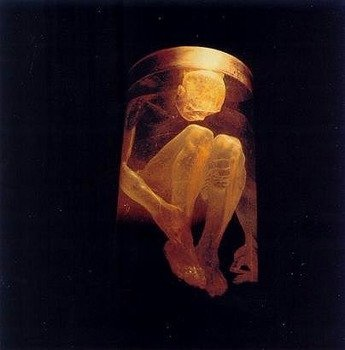 ALICE IN CHAINS : NOTHING SAFE (CD)