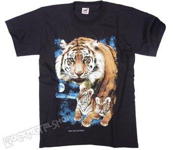 koszulka TIGER