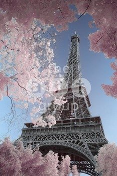 plakat DAVID CLAPP - EIFFEL TOWER INFRARED, PARIS