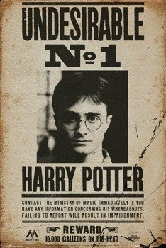 plakat HARRY POTTER -  UNDESIRABLE NO. 1