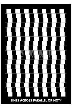 plakat OPTICAL ILLUSION - LINES