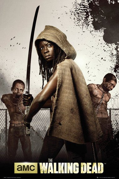 plakat WALKING DEAD - MICHONNE